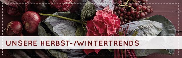 teaser-wintertrends